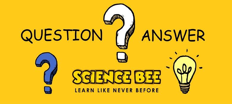Sciencebee Q&A